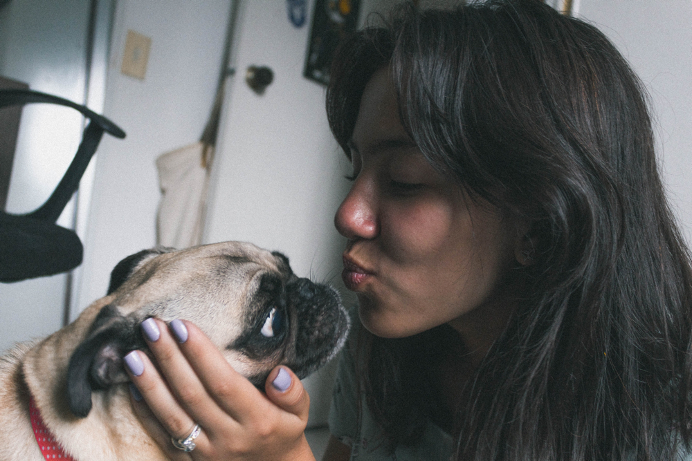 Kissing a dog